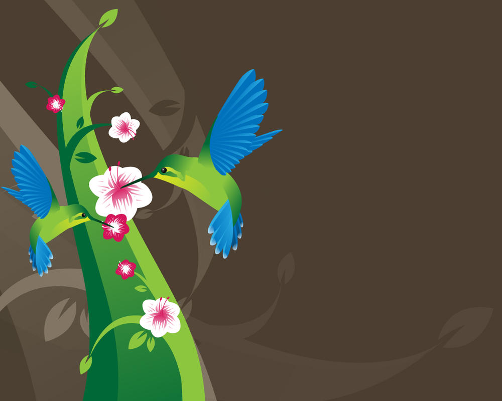 Hummingbird Wallpaper By Wisseh