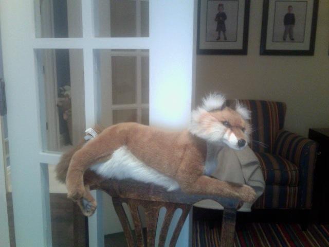 Foxy Loxy by FireNationPhoenix