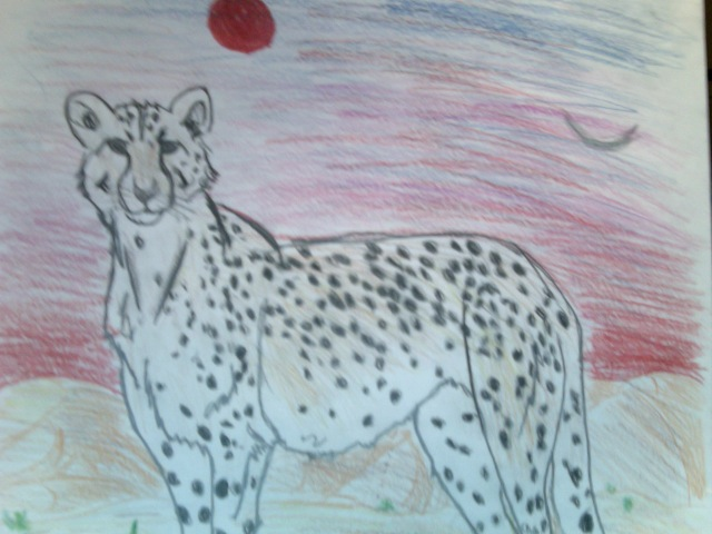 Cheetah by FireNationPhoenix