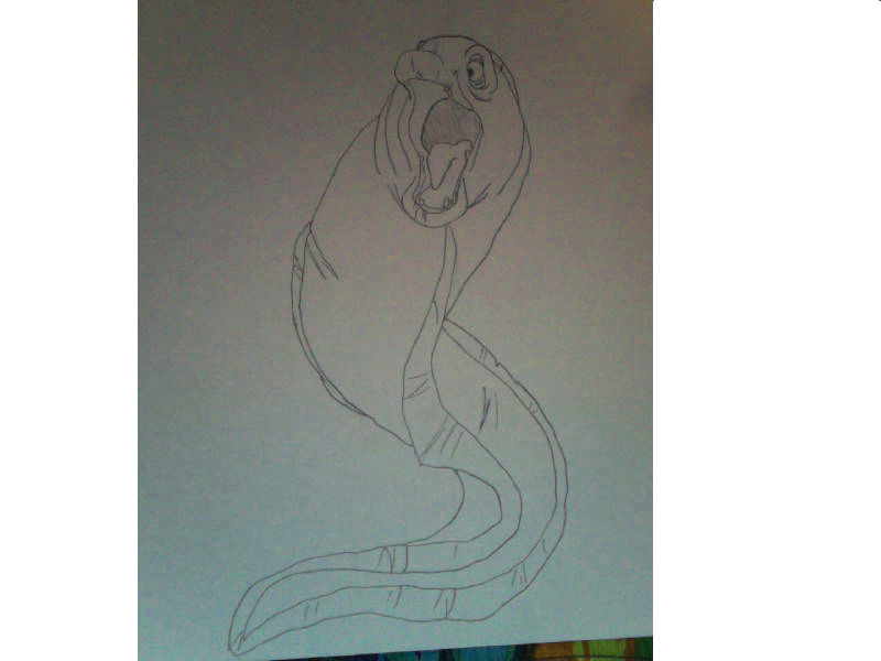 Crazy Eel by FireNationPhoenix