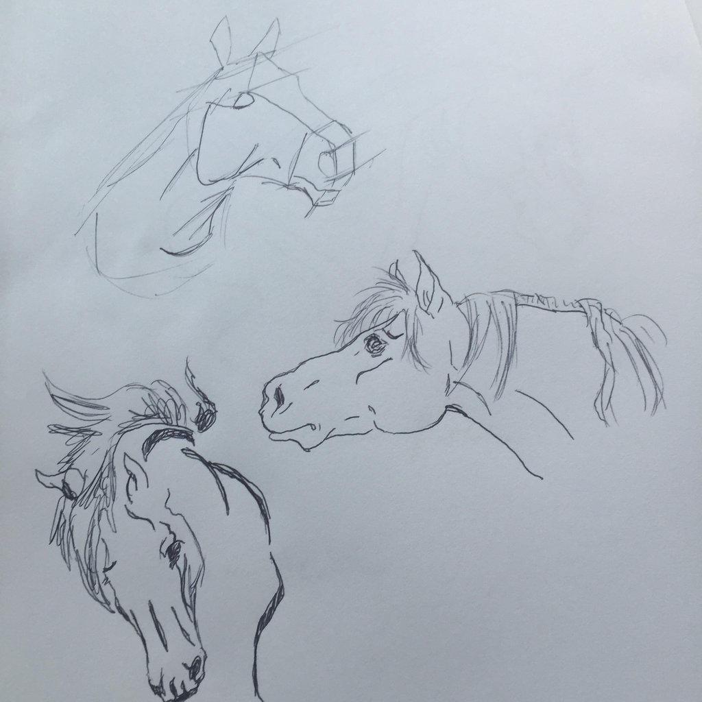 Horse Head Profiles by FireNationPhoenix