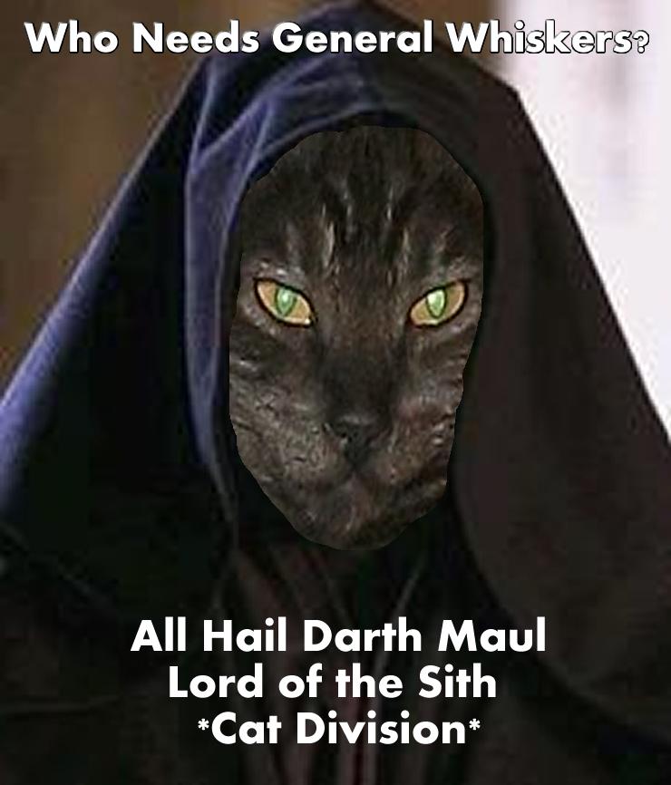 All Hail Darth Maul by GreedLin