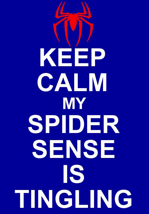 Keep Calm SpiderSenseIsTingiling by GreedLin