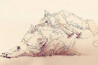 Sleeping buddies by ShaunPayne