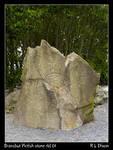 Bransbut Pictish Stone rld 01