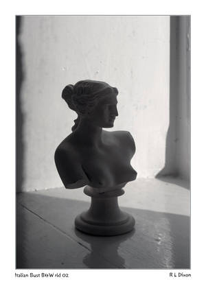 Bust rld 01 BW dasm by richardldixon