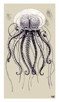 The Jellybrainfish