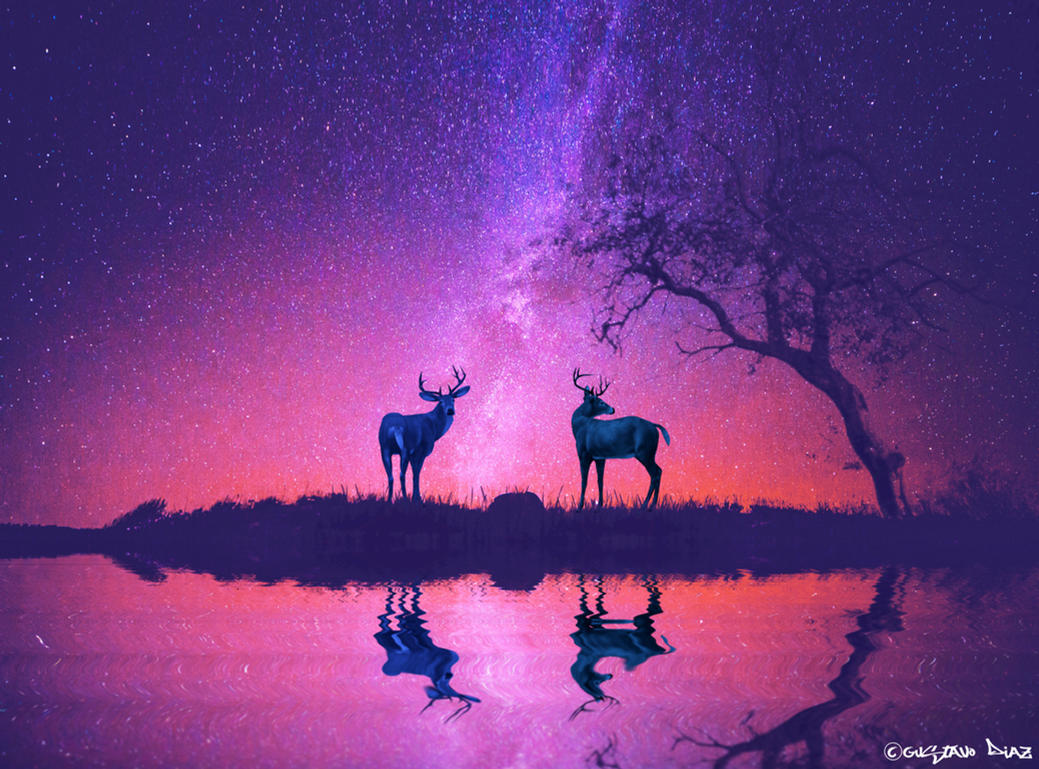 Guardians of the Forest by Lucaskexby
