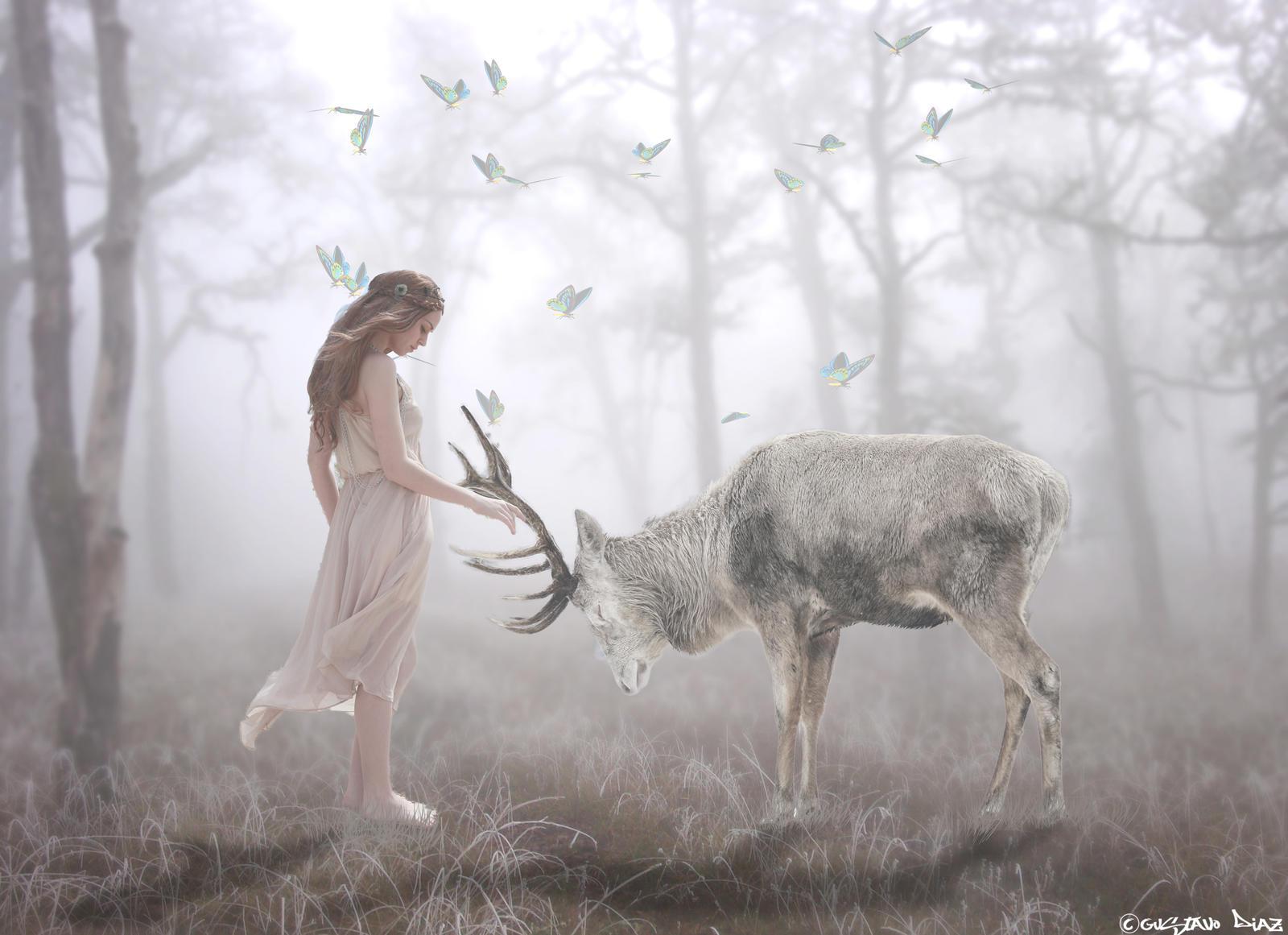 The Deer Whisperer. by gustiidiaz