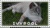 Ivypool by WarriorsResources