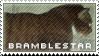 Bramblestar by WarriorsResources