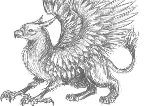 Grey Griffin By Creature Love On DeviantArt