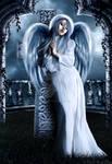 Johnnies Angel