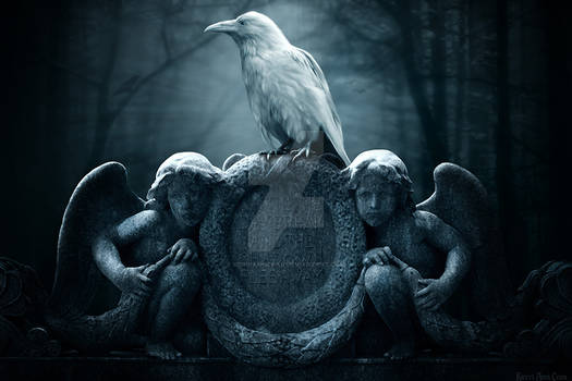 Guardian of the Ravens