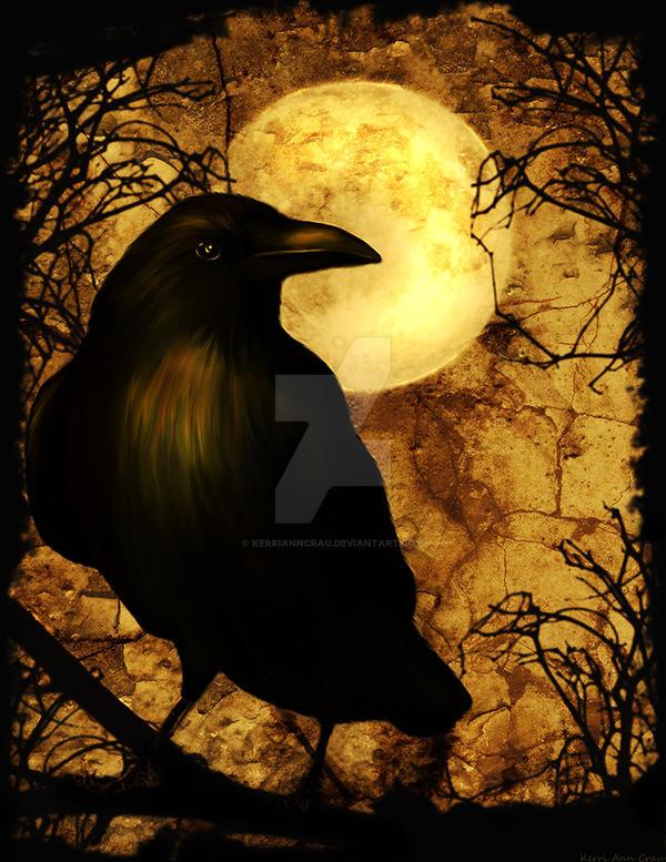 My Raven by KerriAnnCrau