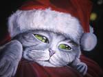 Cat Xmas
