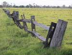 Fence 01