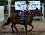 Stock - Horse Team Penning - 017