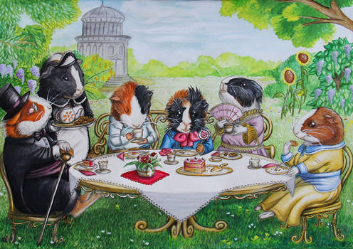 teatime with guinea pigs