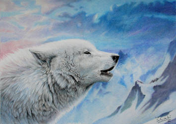 wake the white wolves
