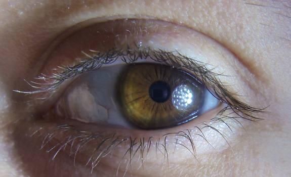 Sammy Eye (Oeil)