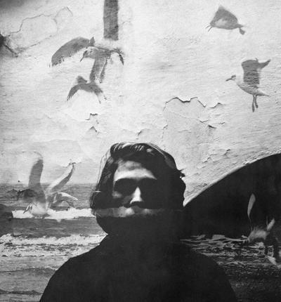 birds by wyrazobcy