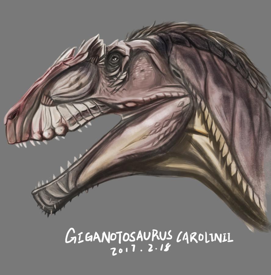 Giganotosaurus Carolinii By KookaburraSurvivor On DeviantArt