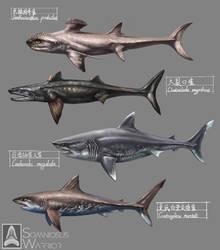 Prehistoric Sharks by KookaburraSurvivor
