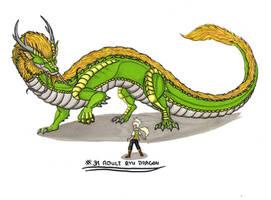 Personal Smaugust Challenge Adult Ryu Dragon