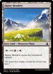 Alpine Meadow - Ahzmandia 1 - Witches  Wonders