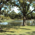 Landscaping Water Features Canton TX | East Texas by MillcreekrancH