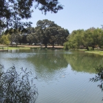 Ranch Ponds Canton TX | East Texas #1Ranch Ponds by MillcreekrancH