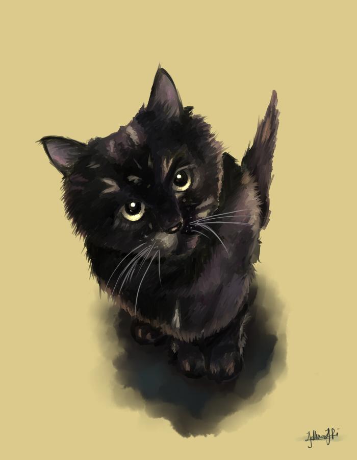 cat by Adlina1