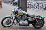 HD Sportster camouflage