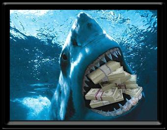 Wall Street Shark by JJPoatree