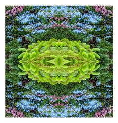 Three Tree Fliptych