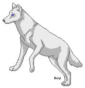 Curiosity by ShadowTimberwolf
