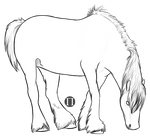 Draft Horse Lines