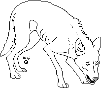 Malnourished Wolf Lineart by ShadowTimberwolf