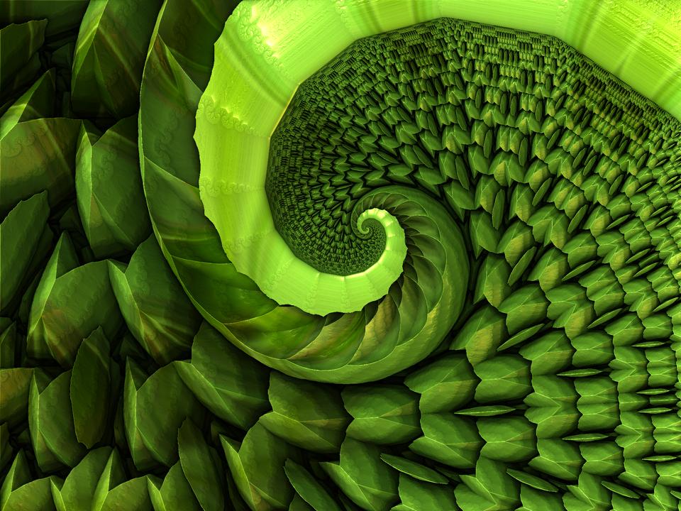 Grass Spiral by LukasFractalisator