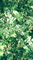 Chlorophyll Foliage by LukasFractalizator