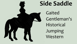 Class 65 Side Saddle: St. Patrick's Day March by AccaliaRose