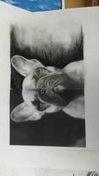 half photo half drawing  by Virginijaa