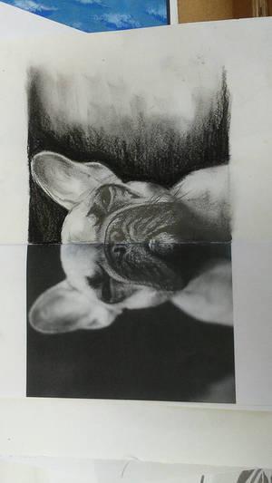 half photo half drawing