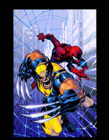 Wolverine spidey by Joemad JSilver colors by Dan