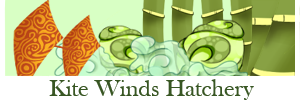 kite_winds_hatchery_by_rebellious_mixtapes-dcmp828.png