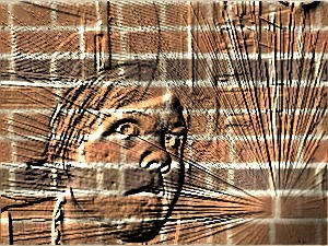 brickliz by scrapeyourknees