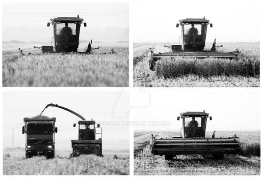 Harvest in 4 simple steps