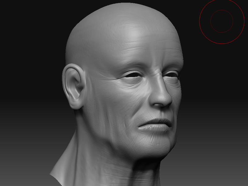 Face Zbrush by DuffMan256