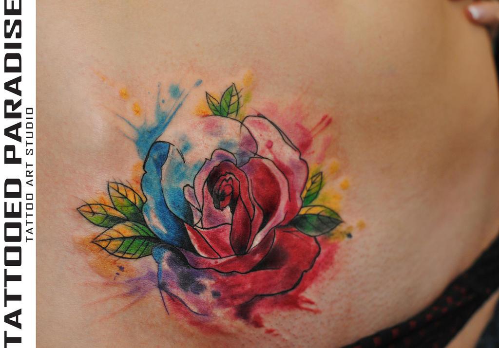 Watercolor Rose Rose Watercolor Drawing Watercolor Trees